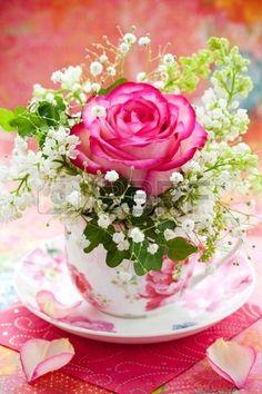 "♫  ""I love flowers filling a tea cup!"" ♫   .. X ღɱɧღ   "