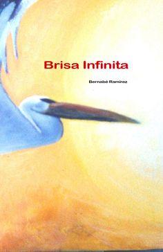 Portada del libro de poemas Brisa infinita Comprar en Amazon en www.brisainfinita.com