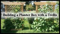 building a planter box with a trellis, container gardening, diy, gardening, go green, homesteading, woodworking projects
