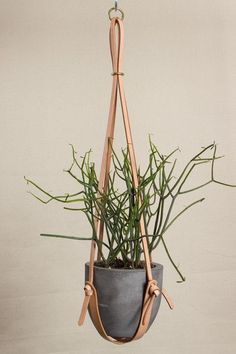 Long Leather Plant Hanger /