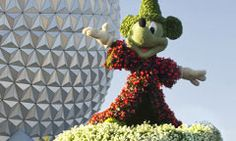 Epcot® International Flower & Garden Festival, are you going?  Book with Spellbound Vacations @ spellboundvacations@gmail.com