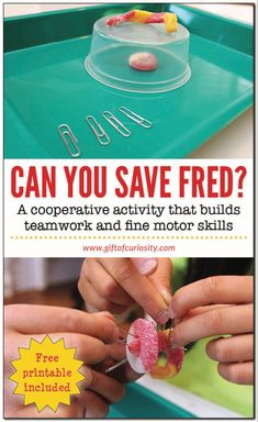 Can You Save Fred? Can You Save Fred? Can You Save Fred? Kids will love this cooperative activity that builds teamwork, planning, communication, and fine motor skills. Teamwork Activities, Cooperative Learning Activities, Communication Activities, Activities For Teens, Stem Activities, Cooperative Games, Science Games For Kids, Back To School Activities, Indoor Activities