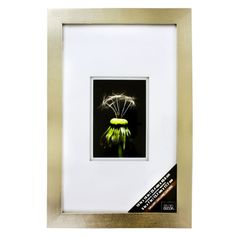 <div>Preserve a cherished photograph or artwork in this distinctive wall frame. The rich, champa...