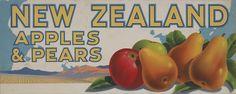 NZ Apples & Pears by Artist Unknown at Image Vault - prints Apple Pear, Vintage Ephemera, Pears, Spring 2014, Apples, New Zealand, Artist, Prints, Image