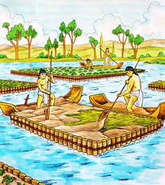 Chinampas: Artificial Islands Created By The Aztecs To Improve Agriculture Aquaponics Greenhouse, Aquaponics System, Aztec Agriculture, Permaculture Design Course, Floating Garden, Aztec Culture, Primitive Survival, Fish Farming, Thinking Day