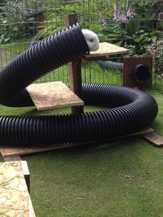 Play area using flexible corrugated plastic drain pipes. Pretty cool, though I'd be scared of cats and such hiding in there...