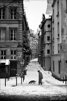 Parisian winter