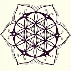 I made another flower of life/mandala drawing - Imgur