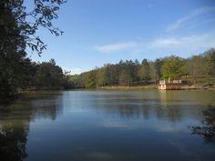 L'Aqualodge Nature © : cabane flottante en bois au #camping domaine de l'étang de bazange #dordogne Périgord