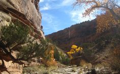 Echo Canyon in Colorado National Monument. 10/31/12 http://coloradoguy.com/echo-canyon-trail/grand-junction.htm