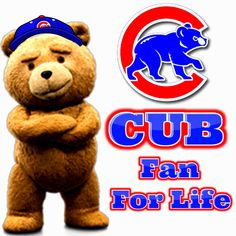 Chicago Cubs Pictures, Chicago Cubs Fans, Chicago Cubs Baseball, Cubs Cards, Burlap Wreath Tutorial, Cubs Team, Fb Profile, Go Cubs Go, City North