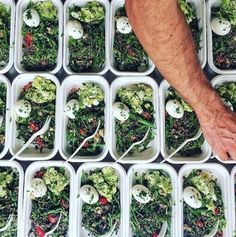 Healthy Lunch Food Delivery Sydney CBD by transformkitchen001