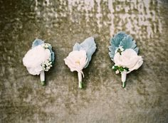 Rose and Dusty Miller Boutonnieres by The Nouveau Romantics | photography by http://jenhuangphoto.com/
