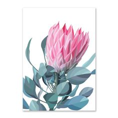 Pink protea wall art by Australian artist Lamai Anne. Bring the beautiful Australian outdoors into your home. Watercolor Bookmarks, Watercolour, Tropical, Floral Artwork, Australian Artists, Botanical Art, Limited Edition Prints, Wall Art Prints, Canvas Prints