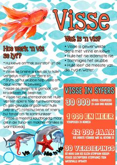 visse hoezit vis Unit Studies, Afrikaans, Classroom Activities, School Projects, Science And Technology, Homeschool, Weather, Education, Learning