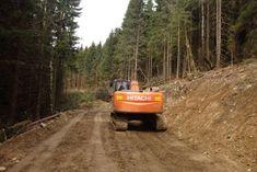 Nelegálna lesná cesta v Národnom park Muránska Planina zasahujúca aj do Chráneného vtáčieho územia, kde prirodzene žil aj tetrov hlucháň Park, Tractor, Parks