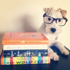 Dogs Like to Read TOO!