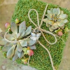 Natural Moss & Succulent Ring Pillow