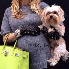 Up Close and today with my little boy, soon to be big brother - #Prada knit top and studded gloves, #Hermès #CDC cuff and #Birkin 35 (in candy color kiwi) with a H silver charm. My little angle is a 3 year old Morkie, half Yorkie, half Maltese. 39 weeks pregnant. See previous pic for full look.