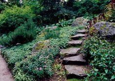 Kivikkopuutarha vaatii suunnitelmaa, jotta lopputuloksesta tulee näyttävä ja luonnollinen. Viherpiha neuvoo, miten teet pihallesi kauniin kivikkopuutarhan.