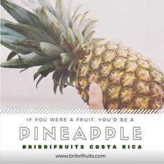 Bribrifruits piñas CostaRica pineapples ananas ,frutas ,fruíts mercados ,mercabarna ,mercamadrid @bribrifruitscostarica #piñas #pineapple #pineapples #ananas #frutastropicales #dieta #nutricion #salud #costarica #caribe #puravida #instanfood #piñasdecostarica #fruterias #mercados #mercamadrid #mercabarna #mercasevilla #spain #bribrifruits #disfrutadelapiña