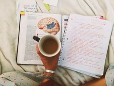 "coffee-and-christmas-lights: ""On Sunday's, we study in bed (with coffee)."""