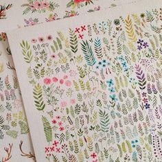 illustration, inspiration, art, cute, flowers, nature, plants, herb