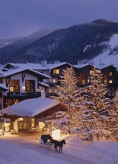 .Winter Wonderland Resort