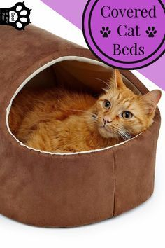 Cozy Cave Bed For Cats Super Warm Cat Love Them