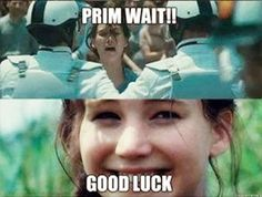 Katniss Everdeen memes; Jokes about The Hunger Games; Funny pictures, photos;