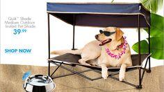 HOT TEMPS COOL PETS Quik™ Shade Medium Outdoor Instant Pet Shade 39.99 SHOP NOW