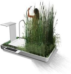 Jun Yasumoto's Phyto-Purification Bathroom Filters & Recycles Water - redesign for the outdoor shower... using the tall grasses or maybe bamboo...