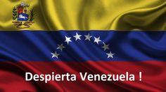 Gaita Despierta Venezuela (2015)