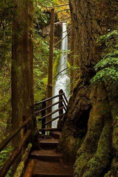 Maremeyer Falls, Olympic National Park, Washington photo via diy