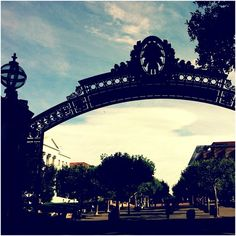 #11 : Walking through Sather Gate. Each time I step through it onto campus I feel like I'm about to do something of great importance. #cal #ucberkeley #bayarea #sf #Berkeley #san francisco