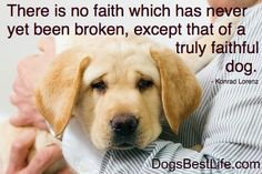 There is no faith which has never yet been broken, except that of a truly faithful dog.
