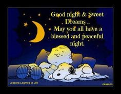 Goodnight.  May you have a blessed and peaceful night.