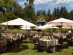 Marin Art and Garden Center Marin Garden Wedding Location San Francisco Bay Area Weddings 94957. Another place in marin?  Would want to make sure that we are the only wedding... that might be more expensive.
