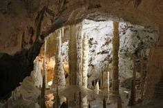 Grotta Gigante: grotta carsica, si trova vicino a Trieste
