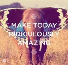 Wellicious//  Make today ridiculously amazing.