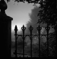 Cobweb gate. Gelatin silver print. Copyright Andrew sanderson. www.andrewsanderson.com Black and White photography, Analogue, Film.