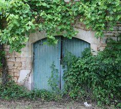 Foto: Frans muurtje met oude blauwe deur en druivenranken. Geplaatst door Rozarozijn op Welke.nl