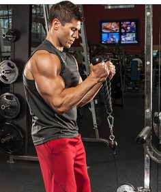 The exercise of choice to build your biceps is called the curl