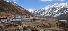 Langtang valley trekking is after the earthquake completely recovered tea-house and trail and can make 7 days sweet able itinerary with cost langtang trek