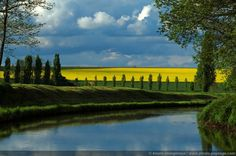 Canal de l'Ourcq in France with in the background fields of rapeseed flowers.