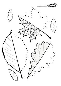 Line worksheets. Autumn Activities, Preschool Activities, Math For Kids, Crafts For Kids, Kindergarten Math Worksheets, Library Activities, Autumn Crafts, Leaf Art, Coloring Book Pages