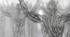 http://yrnxt.com/wp-content/uploads/2013/05/forest.jpg