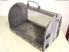 Antique Carrier or Cage for Small Animals or Birds - Wood, Metal, Leather - Rare Wire Crate, Small Animals, Cage, Birds, Pet Stuff, Pets, Antiques, Wood, Leather