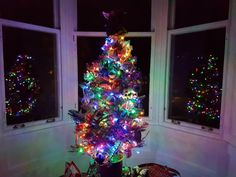 Christmas Tree of Travels  ❤