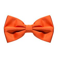 Image result for bow ties